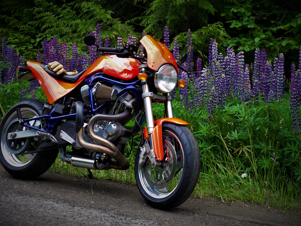 Any Sportster/Buell Performance Gurus in the Crowd