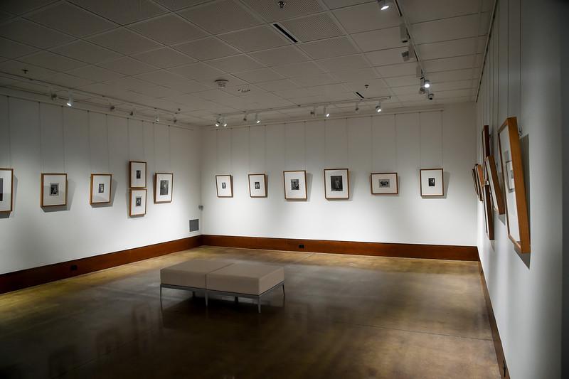 Art Fall Museum Exhibits RSRCA 2019-17