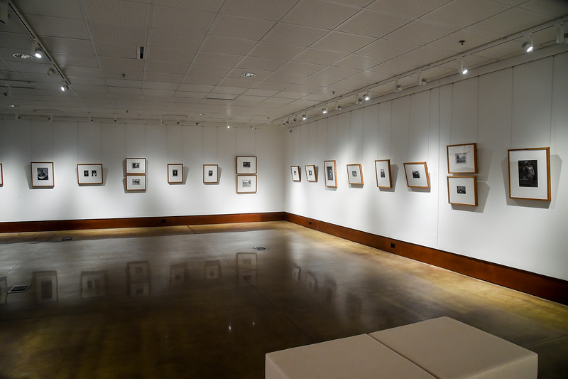 Art Fall Museum Exhibits RSRCA 2019-19