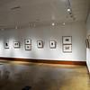 Art Fall Museum Exhibits RSRCA 2019-21