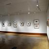 Art Fall Museum Exhibits RSRCA 2019-22