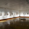 Art Fall Museum Exhibits RSRCA 2019-26
