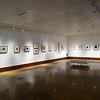 Art Fall Museum Exhibits RSRCA 2019-25