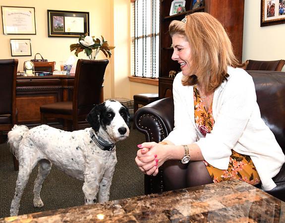 JIM VAIKNORAS/Staff photo Attorney Elaine Dalton with her dog Skye at her Groveland office