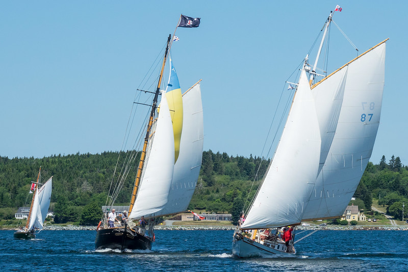 SCHOONER RACE, LAHAVE RIVER