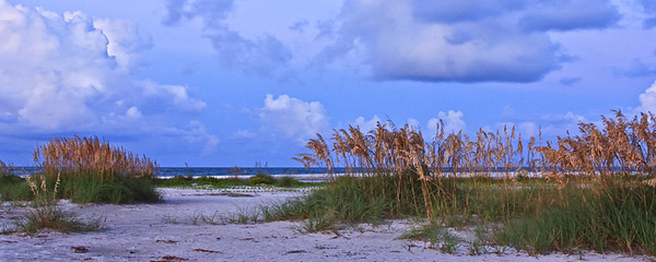 Sunrise and Sea Oats