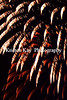 Fireworks 07-2017_055