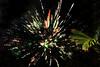 wylie fireworks_045