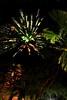 wylie fireworks_044