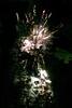 wylie fireworks_032