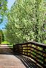 WoodBridge Spring 2013_006p