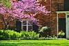 Spring Home GP14