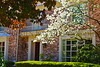 Spring Home Gp11_001
