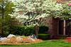 Spring Home 3_007m