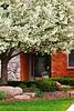 Spring Home 4_006p