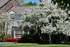 Spring home GP 8_007
