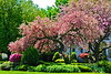 Spring Home GP16