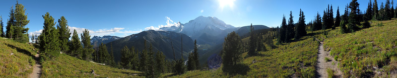 Panorama from the Silver Forest Trail at Sunrise in Mt. Rainier National Park.