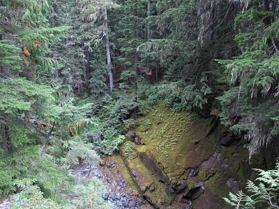 Gorge of the Fryingpan Creek.