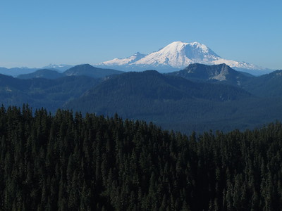 Nice view of Mt. Rainier from the Kendall Katwalk Trail.