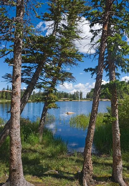 Echo Lake, Mt. Evans Highway, Colorado