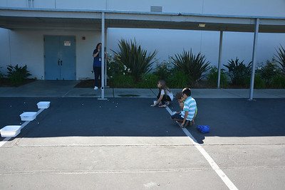 Students Launch Marshmallows With Catapults That They Constructed