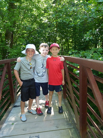 Delaware Valley Wildlife Discovery Camp