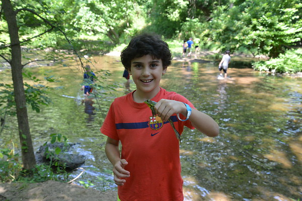 Pathfinders and Trailblazers Day Camp