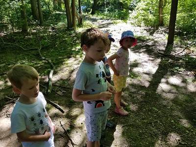 Week 2 - Nature Explorers