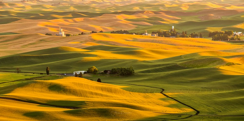 Evening Light at Steptoe Butte ~ Washington