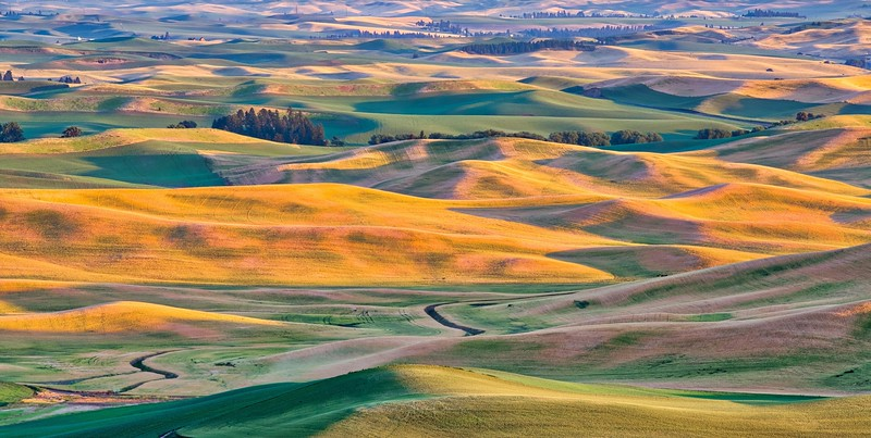 Evening Light from Steptoe Butte ~ Washington