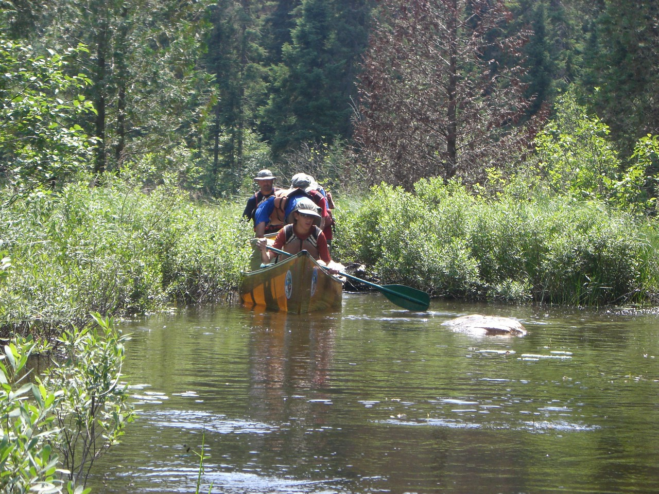 Crossing one of 5 small beaver dams on the wet portage to Sunday Lake