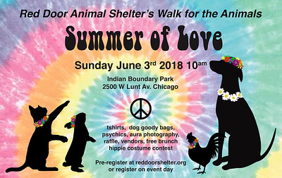 Summer of Love Walk 2018