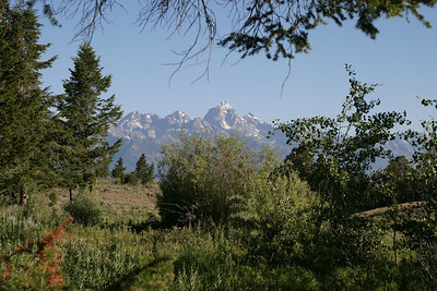 The view from the tent door at Curtis Canyon Campground.  Jackson, WY.