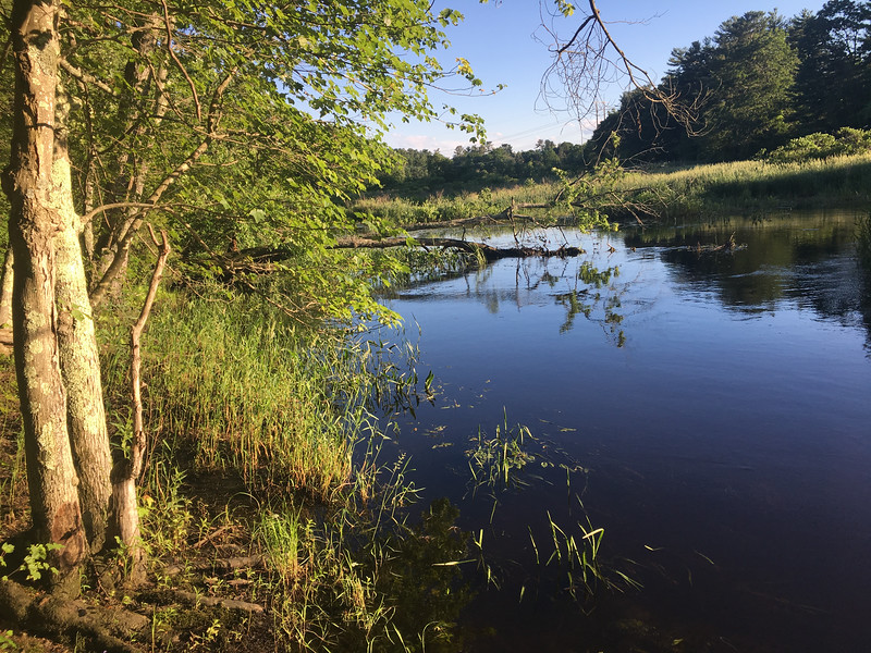 A brilliant blue Shawsheen River sparkled on June 21, the longest-light day of the year. Photo by Mary Leach