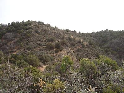 Trail behind me