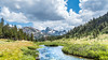 Summer in the High Country