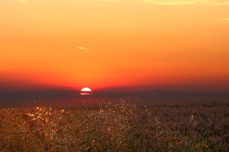 Sunset over Corn