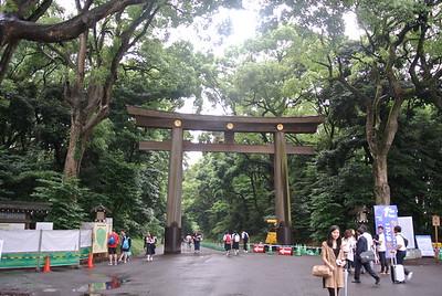 Meiji Shrine (6/28)