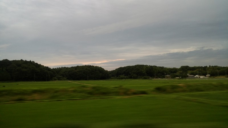 Train from Narita Airport to Central Tokyo