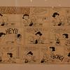 Day14-CA-CharlesSchultzMuseum-005