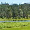 Day7-Yellowstone-052