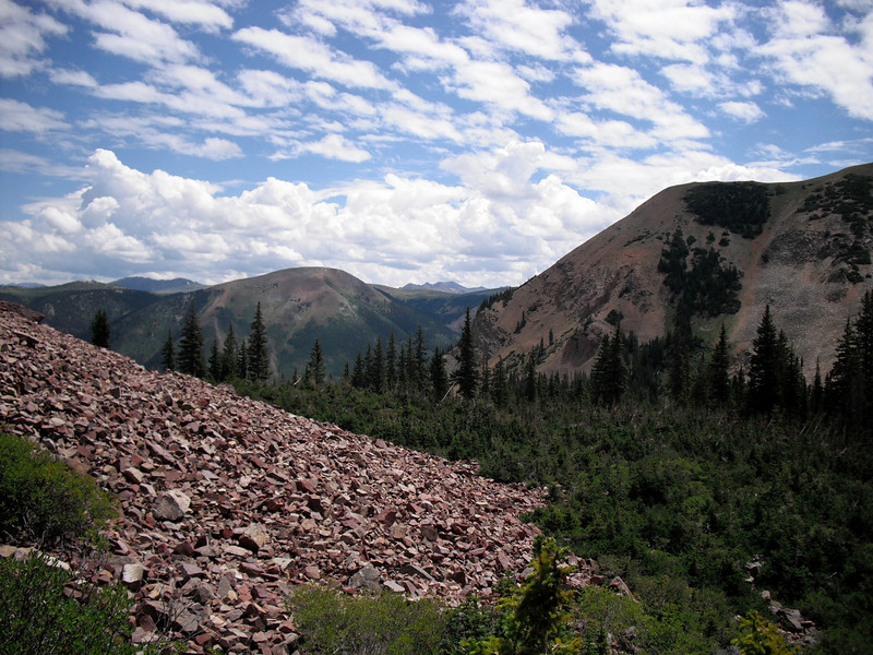 A talus field is created by loose rocks falling avalanche style off a mountain side. The trail traversed two massive talus fields before the switch-back ascent.