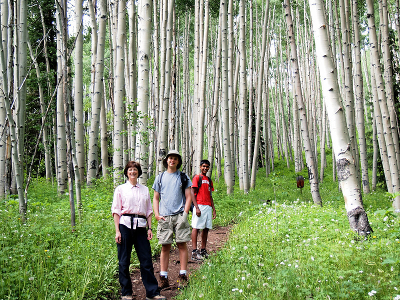 "On July 7 we decided to hike to ""American Lake."" The trail head is in the deep valley cut by the Castle Creek. The hike starts in an Aspen forest."