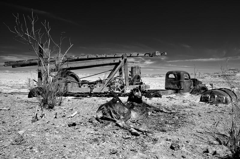 Desert Casualties: Utah
