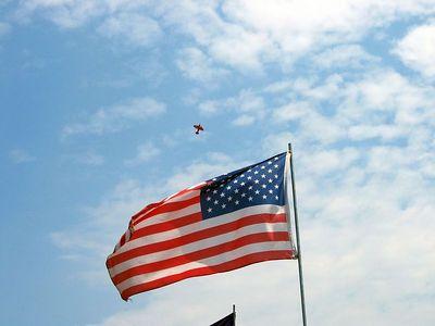 Biplane and flag 2