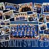 2015 Swim