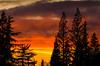Raging Sunset