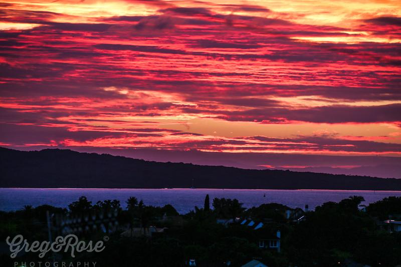 A Hauraki Gulf Morning
