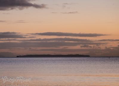 Tiri Tiri Matangi Island an amazing bird Sanctuary